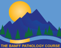 Banff Pathology Course