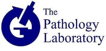 Pathology Outlines - Jobs page as of February 1, 2019