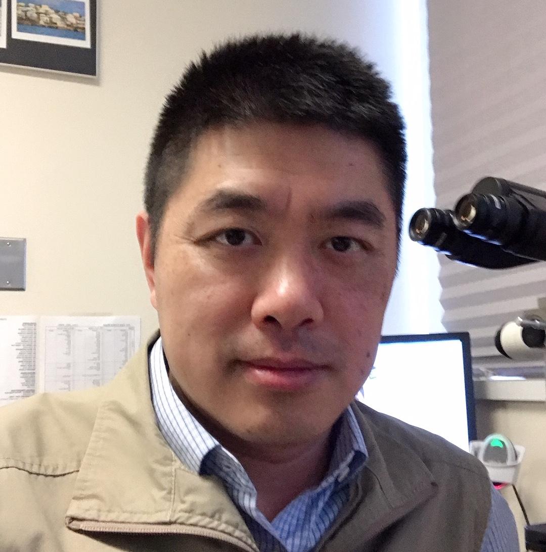 Gang Wang, M.D., Ph.D.