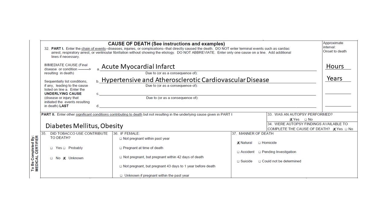Hospital setting sample death certificate