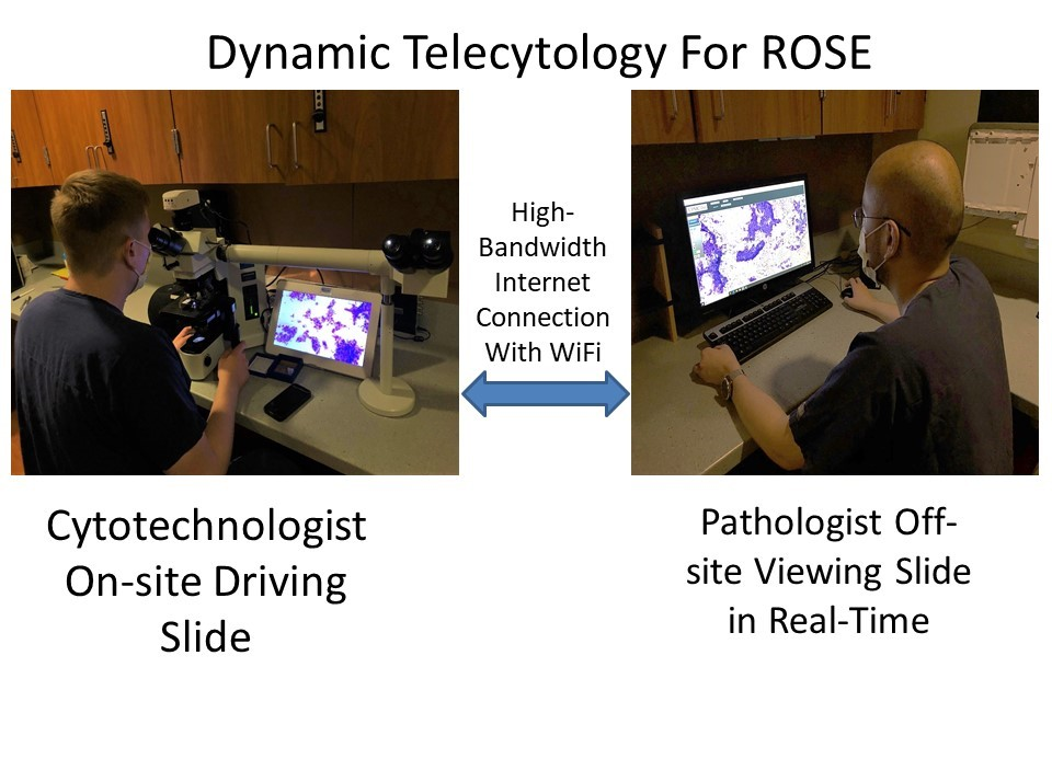 Dynamic telecytology workflow for ROSE