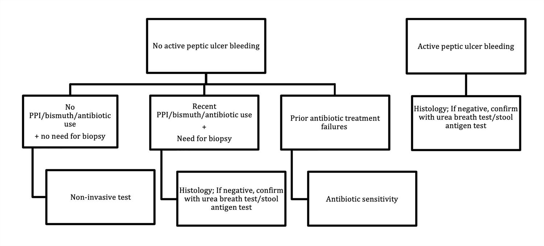 Proposed algorithm for diagnosis