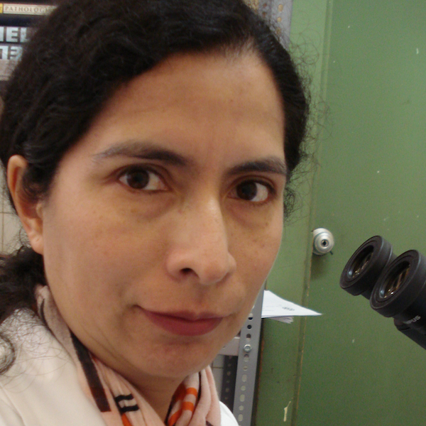 Violeta Aragón, M.D.