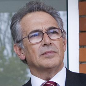Manuel Sobrinho Simões, M.D., Ph.D.