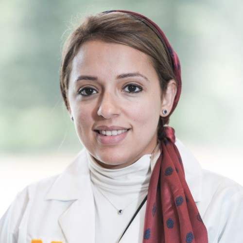 Eman Abdulfatah, M.D.