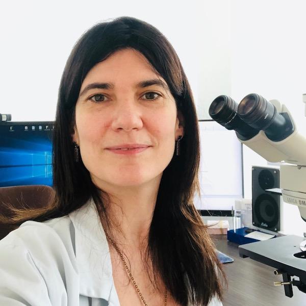Sophie Ferlicot, M.D., Ph.D.