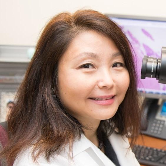 Jiaqi Shi, M.D., Ph.D.