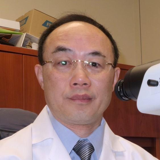 Linsheng Zhang, M.D., Ph.D.