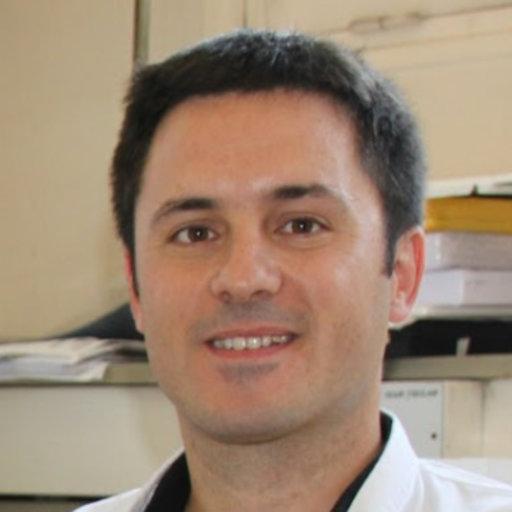 Damien Ambrosetti, M.D., Ph.D.
