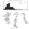 Epidemiology and localization