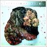 4 cm, gray-white, circumscribed tumor<br>confined to the lower lobe under the pleura